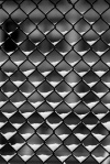 malla metálica simple torsion