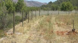Postes de madera tratada en cercado metálico