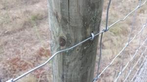 Sujeción de alambres en poste de madera para cercado